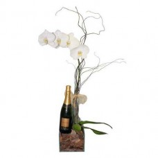 Orquídea com Chandon